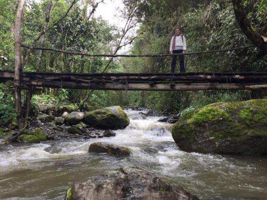 valledeCOCORA_chusa_puente